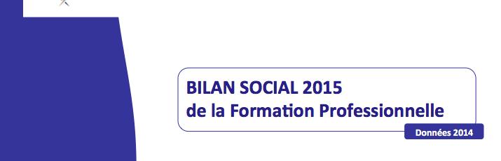 Bilan social de branche 2015 (Accès Adhérent)